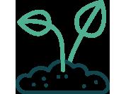 icon-planting-2